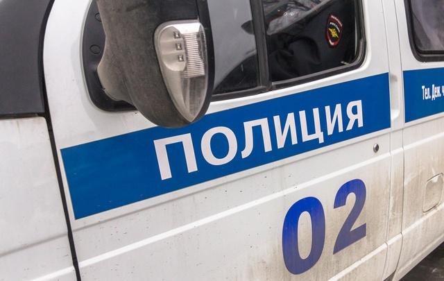 В Тольятти дебошир кинул в работника склада компьютерный монитор и горшок с цветком
