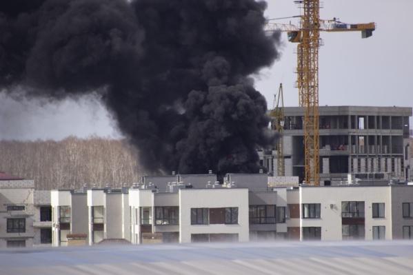 Площадь возгорания составила 20 квадратных метров