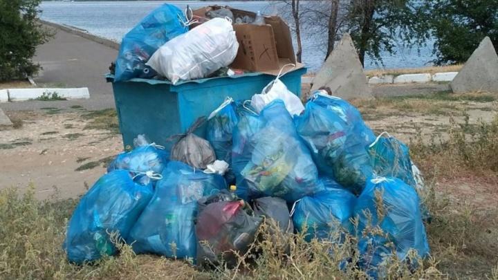 Волгоградцы пообещали подарить чиновникам Камышина мешки с мусором