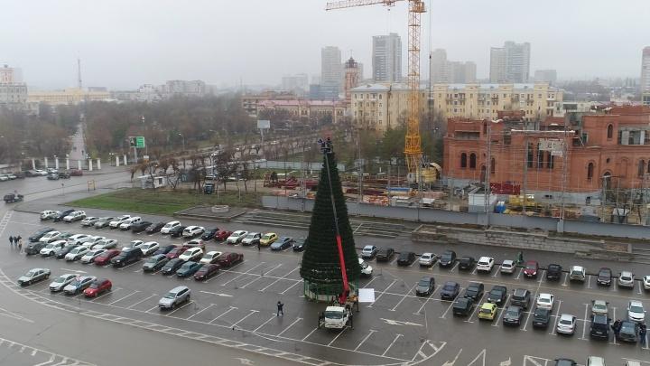 Главную елку в центре Волгограда заперли в кольце автомобилей