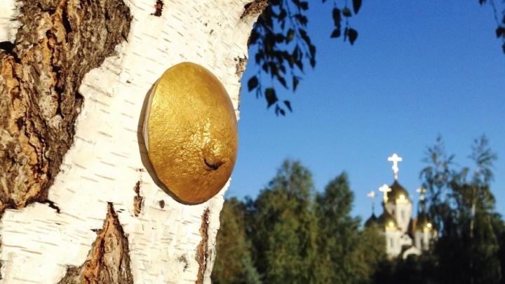 Волгоградский мастер перформанса украсил символами материнства березы Мамаева кургана