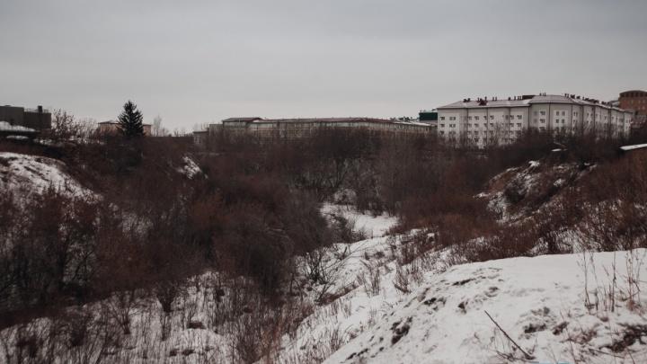 В логе реки Тюменки построят студенческое общежитие и парковку: общественники против