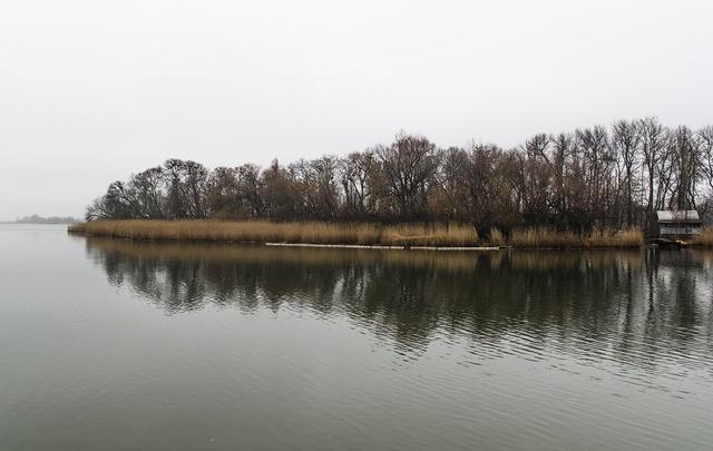 МЧС: в Ростовской области ожидаются заморозки