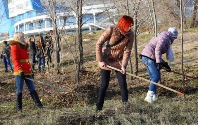 Волгоградские депутаты возьмут в руки грабли и выйдут на субботники