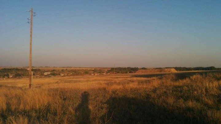 В Волгоградской области начали гектарами раздаривать землю