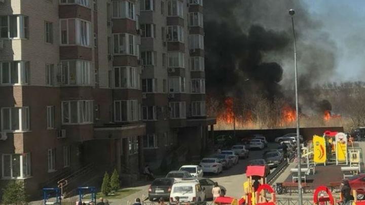 В Ростове около жилого комплекса «Голубые ели» загорелся камыш: пламя подступило к домам