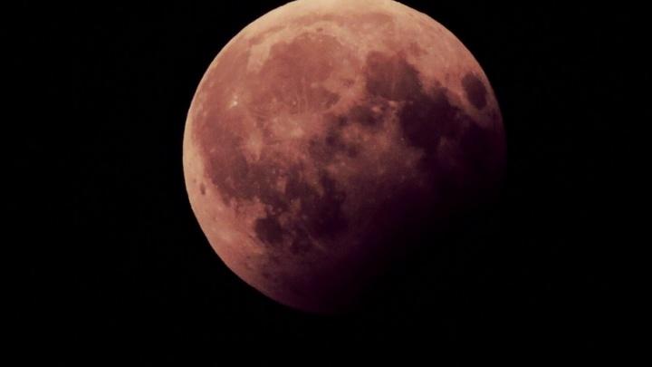 Ростовчане сняли на фото «кровавую луну»