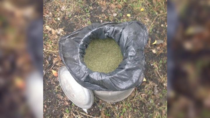 Житель Новочеркасска прятал наркотики в будке своей собаки