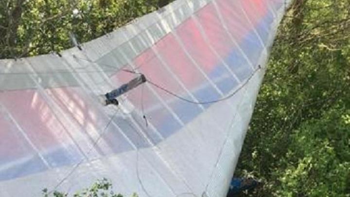 В Волгоградской области упал дельталет: пилот погиб