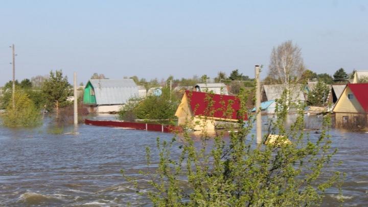 Паводок в Ишимском районе: подтоплены 130 жилых домов и 6608 дачных участков