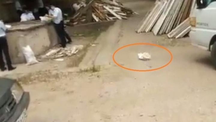 В МВД прокомментировали скандальное видео полицейского из Волгограда
