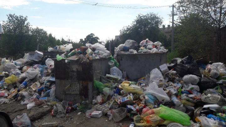 Ангарский поселок в Волгограде утопает в мусорных свалках