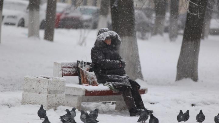 Промокнем и замёрзнем: в Ярославле на зиму не успели поставить почти четверть остановок