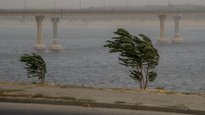 В ближайшие часы Волгоград окажется во власти сильного ветра