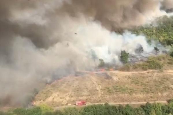 В тушении пожара задействовано уже более 1000 спасателей