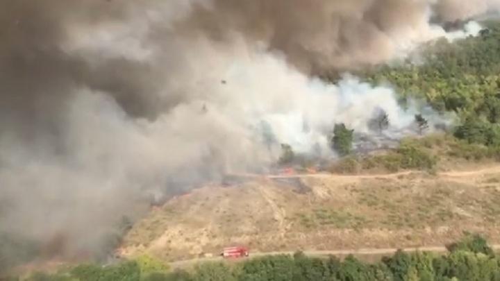 Огнем в Усть-Донецке пройдено более 4 тысяч гектаров. Подробности – в режиме онлайн
