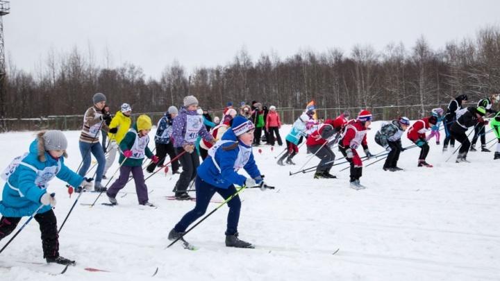 В Архангельске началась регистрация участников на «Лыжню России»