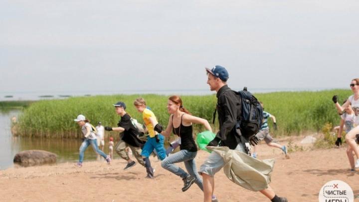 Северодвинцы совместят приборку на побережье Белого моря с квест-игрой