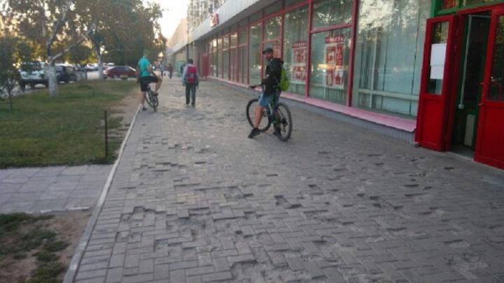 Волгоградские активисты изучат проблемные места Ворошиловского района