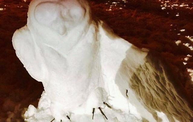 Волгограду обещают идеальную неделю для игры в снежки и лепки снеговиков