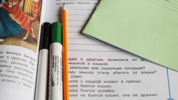 Восемь школ Челябинской области получат по миллиону от Министерства образования РФ