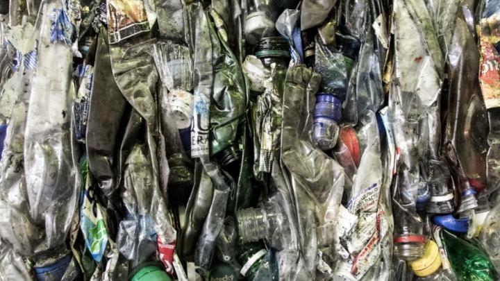Чиновницу из Вилегодского района оштрафовали за сжигание мусора