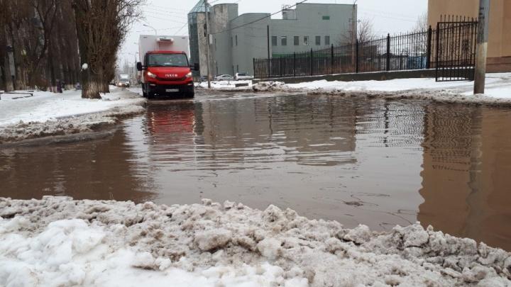 В растаявшем после снегопада Волгограде разлились легендарные лужи