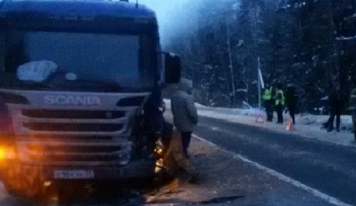 Восьмого в восемь вечера: грузовик раздавил пешехода на трассе М-8 в Ярославской области