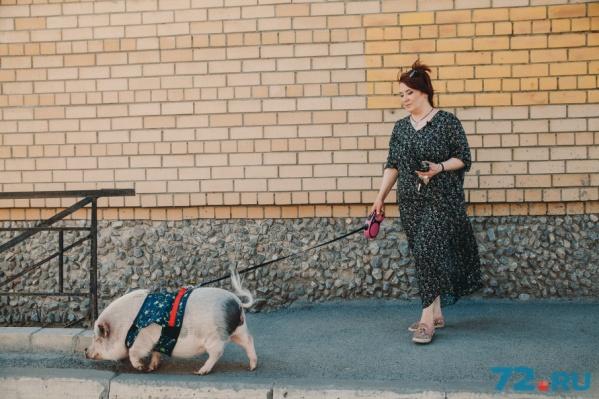 Летом Доня гуляет в специально сшитой для нее одежде. Зимой — в связанном на заказ комбинезоне