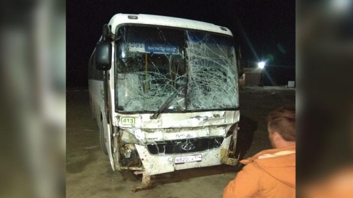 Поймал на скаку: автобус, ехавший до Челябинска, столкнулся с лошадью