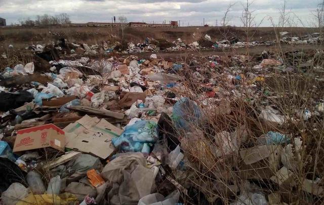 Жители села под Чебаркулём устроили стихийную свалку возле молочной фермы