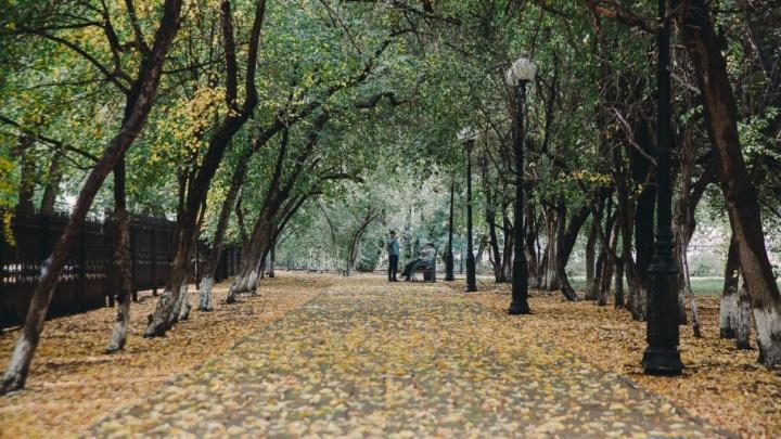 На смену теплым и солнечным дням в Тюмень придут дожди и похолодание: прогноз погоды на неделю
