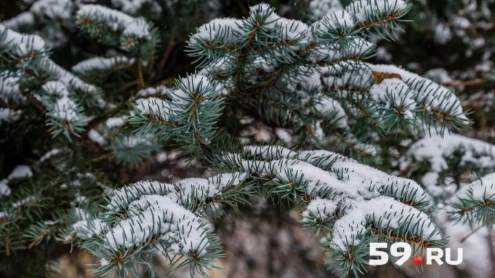 Снегопад и легкий мороз: рассказываем о погоде в Прикамье на выходные