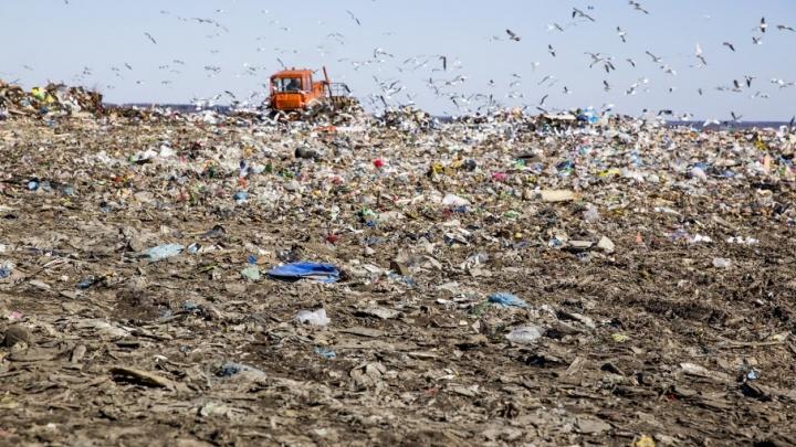 На полигоне «Скоково» появятся новые площадки для захоронения мусора