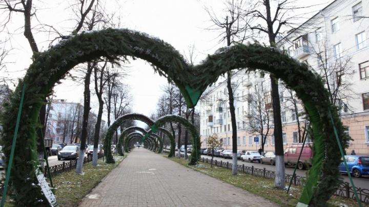 Арки-сердца в Ярославле стали еловыми
