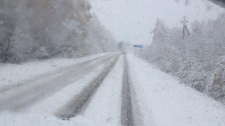 Ярославскую область завалило первым снегом: кто пострадал