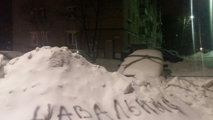 Надпись «Навальный» не дала ярославскому сугробу привилегий