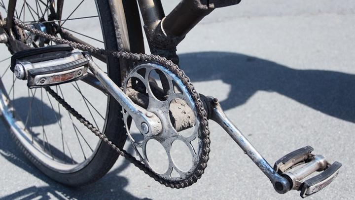 Бухгалтер, «заминировавший» велосипед, заплатит за ложный вызов ОМОНа