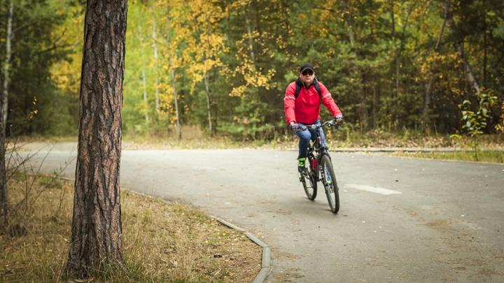 Велодорожки, тренажёры и детские площадки: парки Челябинска обновят на 81 млн рублей