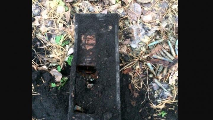 В сызранском лесу нашли тайник с сотней старинных патронов