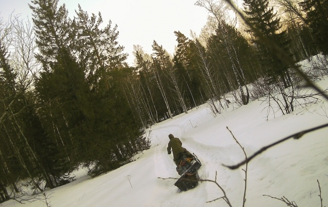 На «Таганае» браконьеров поймали в фотоловушку