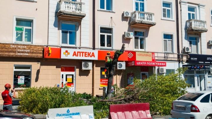 Из-за коммунальной аварии на улице Ленина пришлось спилить деревья