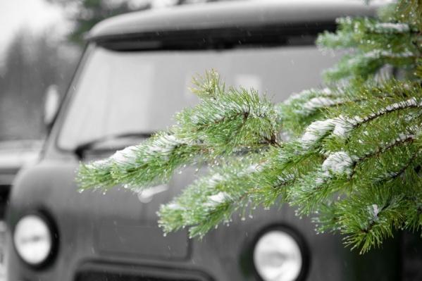 Снег и тепло — такая погода будет в регионе 29 декабря