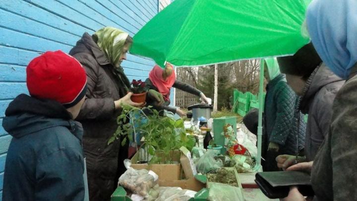 На сельхозярмарке собрали деньги на содержание храма в Цигломени