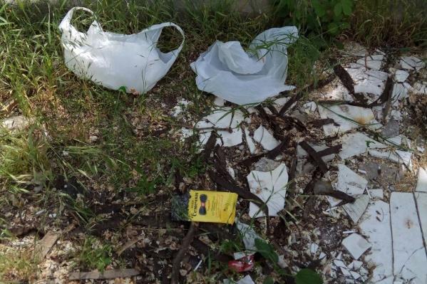 Активисты собирали пакеты, бумажки, старые ветки и использованные шприцы