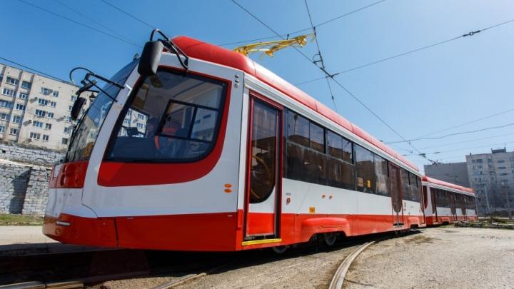 В дни матчей в Волгограде изменят схему движения троллейбусов и трамваев