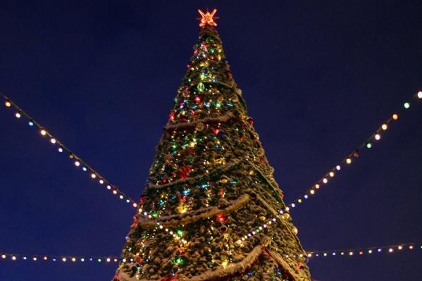Рабочие начали собирать новогоднюю ёлку на главной площади города