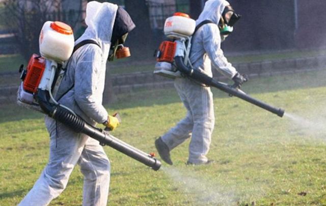 В Ростовской области от укусов клещей пострадали 229 человек