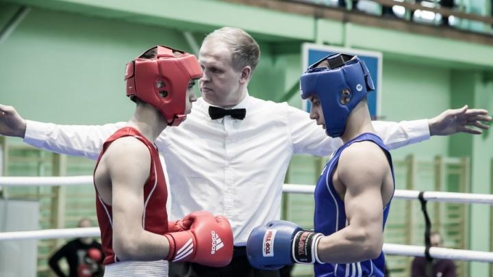 Боксеры Архангельской области взяли 12 наград на зональных соревнованиях