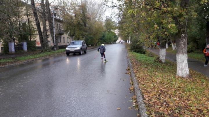 Выбирают место: в Перми построят лыжероллерную трассу